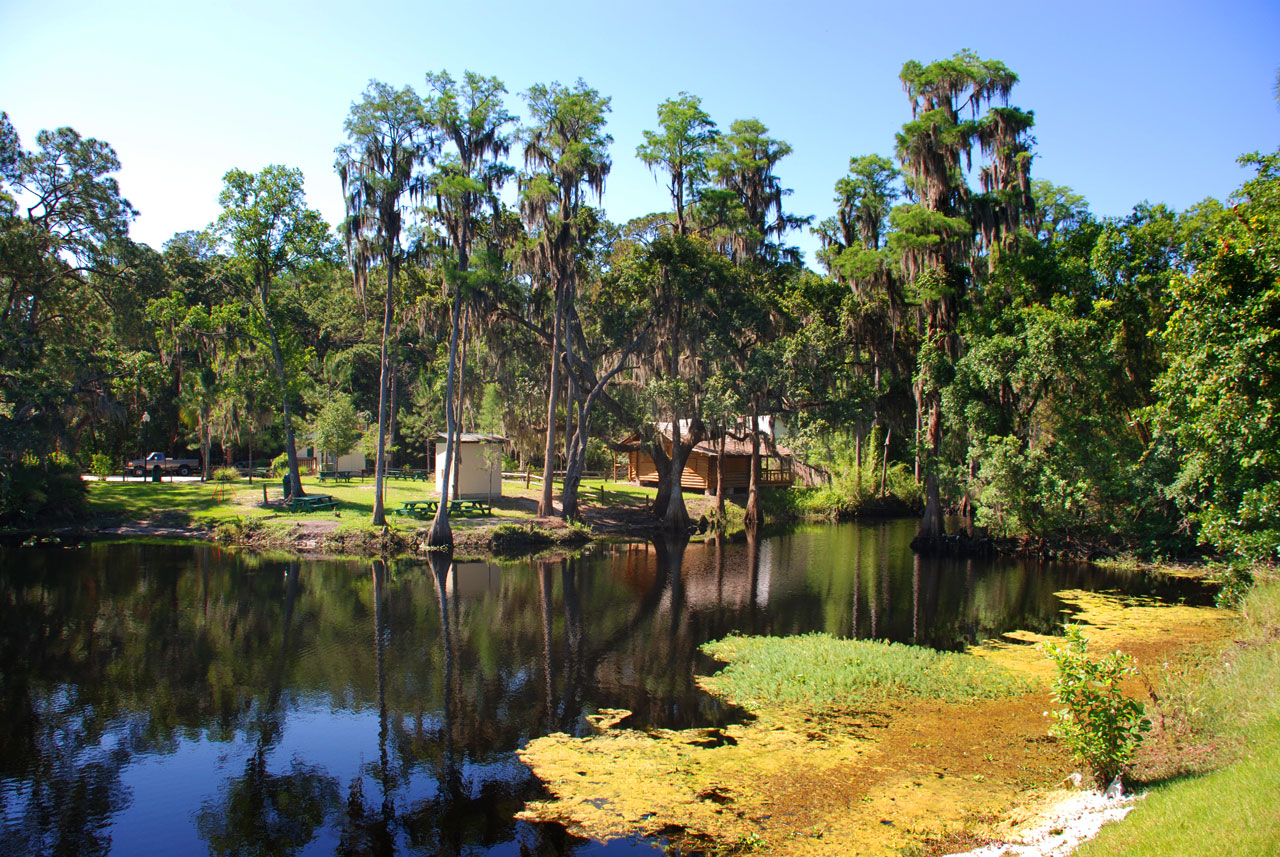 Picturesque view across Shingle Creek