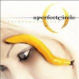 Perfect Circle - Thirteenth Step Album