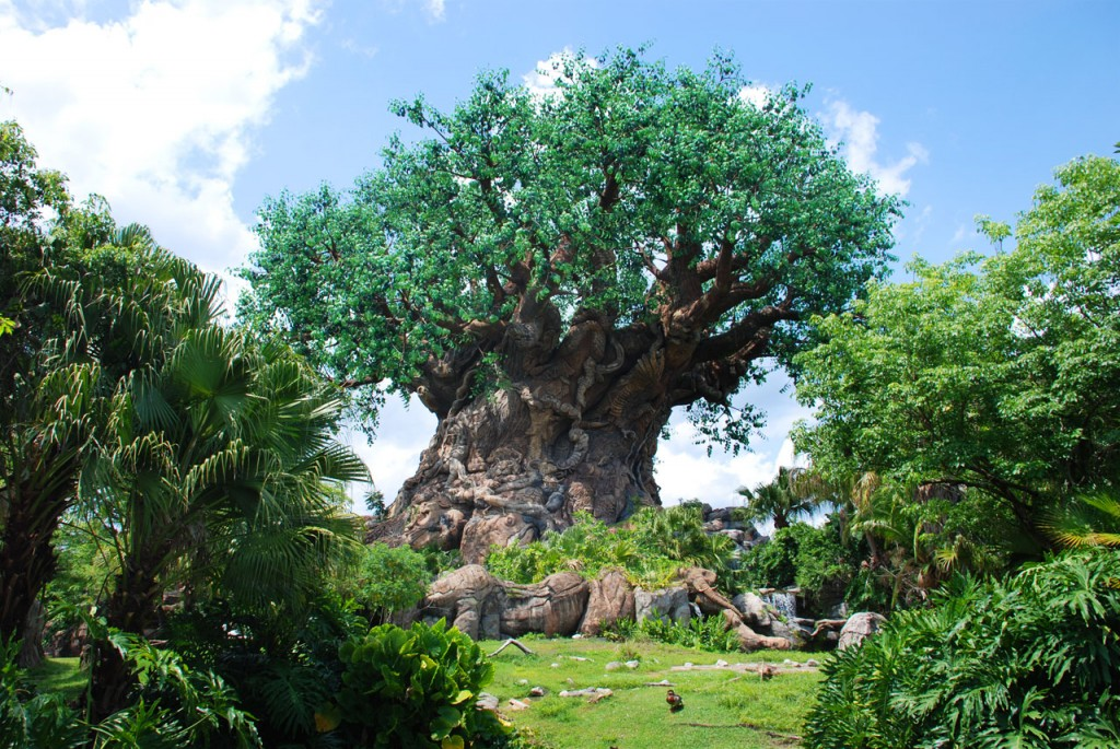 Disney's Animal Kingdom is the 4th of the 4 theme parks - pictured is the impressive Tree of Life