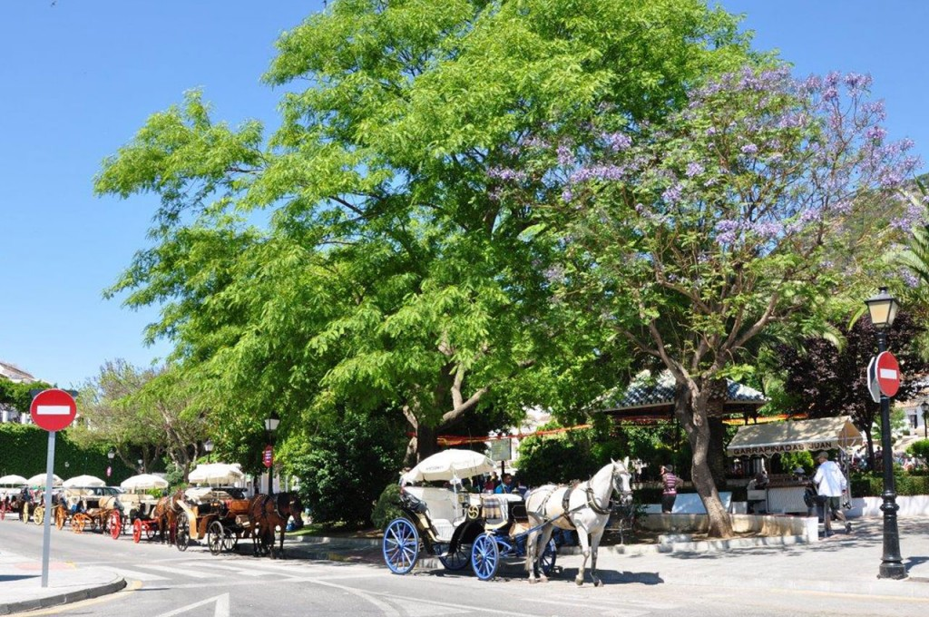 Take a guided tour of Mijas on one of the beautiful horse drawn carriages