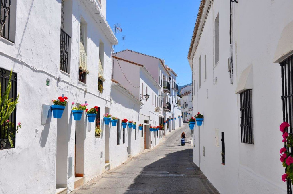 Traditional white-washed houses in Mijas proudly displaying colour geraniums
