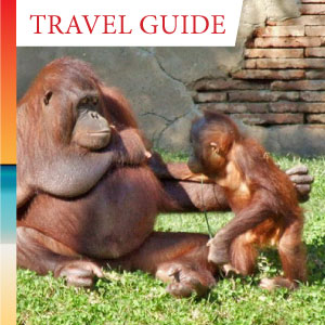 Touring the wildlife attractions on the Costa del Sol of Spain