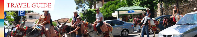 Learn more about the famous 'burro-taxis' - Donkey-powered transport in Mijas Pueblo, Spain