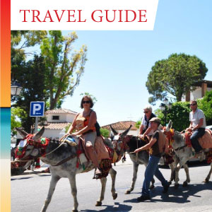 Learn more about the famous Mijas Donkey Burro Taxis