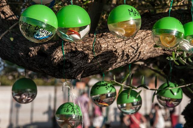 Parque de la Bateria dummy tree