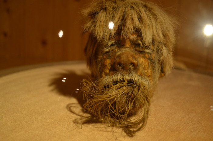Shrunken Head on display in the Carromato de Max Museum