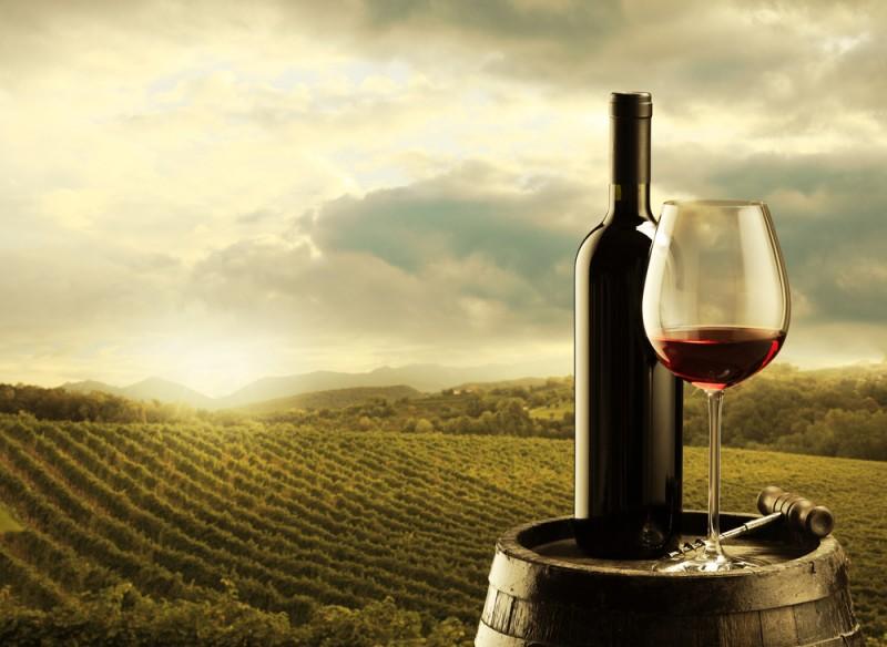 Malaga Wine Country