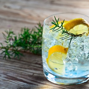 The Best Gin Bars on the Costa del Sol
