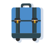 travel insurance baggage stats
